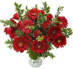 5 adet kirmizi gül 5 adet gerbera aranjmani  Düzce anneler günü çiçek yolla