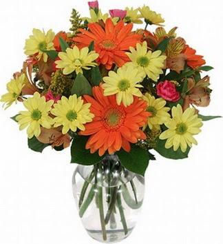 Düzce çiçek gönderme  vazo içerisinde karışık mevsim çiçekleri