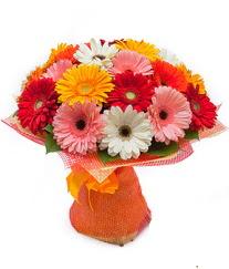 Renkli gerbera buketi  Düzce çiçek yolla