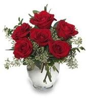 Vazo içerisinde 5 adet kırmızı gül  Düzce hediye sevgilime hediye çiçek