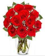 12 adet vazoda kıpkırmızı gül  Düzce online çiçekçi , çiçek siparişi