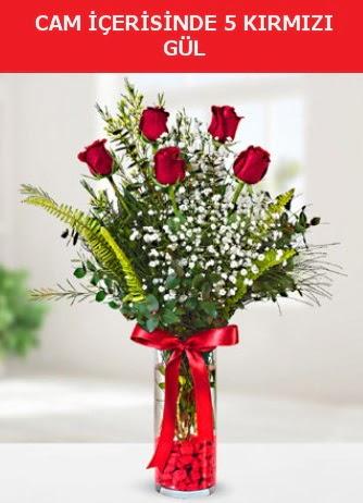 Cam içerisinde 5 adet kırmızı gül  Düzce çiçek online çiçek siparişi