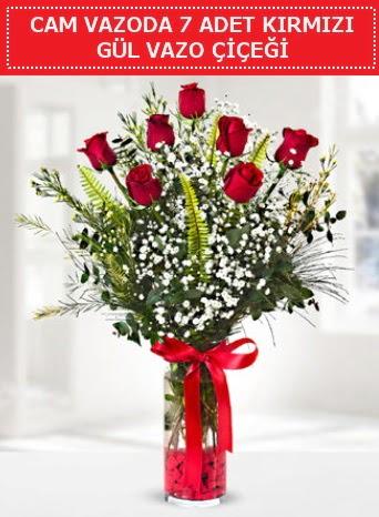 Cam vazoda 7 adet kırmızı gül çiçeği  Düzce internetten çiçek siparişi