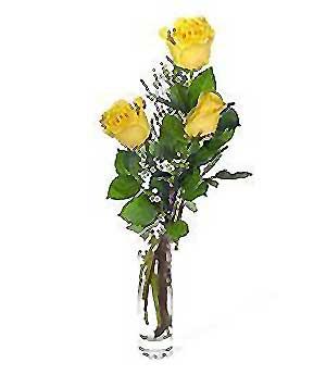Düzce kaliteli taze ve ucuz çiçekler  3 adet kalite cam yada mika vazo gül