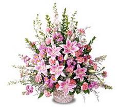 Düzce çiçek online çiçek siparişi  Tanzim mevsim çiçeklerinden çiçek modeli
