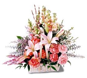 Düzce çiçek online çiçek siparişi  mevsim çiçekleri sepeti özel tanzim