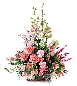 Düzce 14 şubat sevgililer günü çiçek  mevsim çiçeklerinden özel