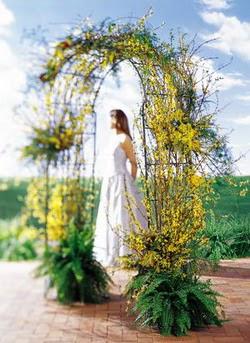 Düzce çiçek servisi , çiçekçi adresleri  güller ve mevsim çiçegi