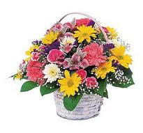 Düzce uluslararası çiçek gönderme  mevsim çiçekleri sepeti özel