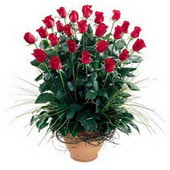 Düzce İnternetten çiçek siparişi  10 adet kirmizi gül cam yada mika vazo