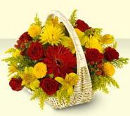 Düzce çiçek gönderme sitemiz güvenlidir  sepette mevsim çiçekleri