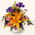 Düzce çiçek gönderme sitemiz güvenlidir  sepet içinde karisik çiçekler