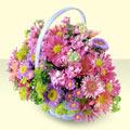 Düzce çiçekçi mağazası  bir sepet dolusu kir çiçegi  Düzce internetten çiçek siparişi