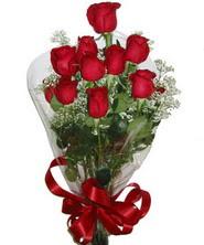 9 adet kaliteli kirmizi gül   Düzce çiçek siparişi sitesi