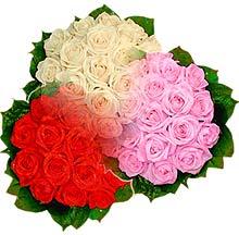3 renkte gül seven sever   Düzce uluslararası çiçek gönderme