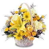 sadece sari çiçek sepeti   Düzce internetten çiçek siparişi