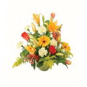 karisik renkli çiçekler tanzim   Düzce internetten çiçek siparişi
