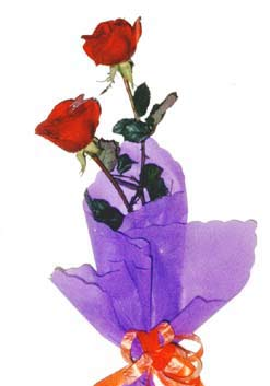 2  adet kirmizi gül buketi   Düzce uluslararası çiçek gönderme