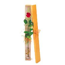 ince  kutuda  1  gül   Düzce çiçek siparişi vermek