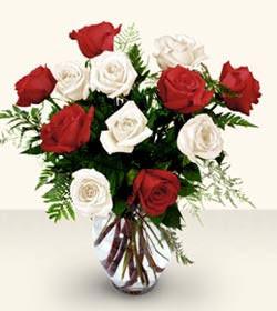 Düzce İnternetten çiçek siparişi  6 adet kirmizi 6 adet beyaz gül cam içerisinde