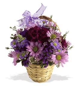 Düzce İnternetten çiçek siparişi  sepet içerisinde krizantem çiçekleri
