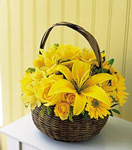 sepet içerisinde sarinin sihri  Düzce çiçek yolla , çiçek gönder , çiçekçi