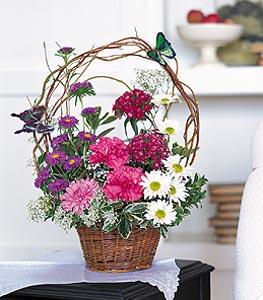 Düzce çiçek yolla , çiçek gönder , çiçekçi   sepet içerisinde karanfil gerbera ve kir çiçekleri