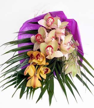 Düzce çiçek yolla , çiçek gönder , çiçekçi   1 adet dal orkide buket halinde sunulmakta