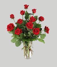 Düzce çiçek yolla , çiçek gönder , çiçekçi   11 adet kirmizi gül vazo halinde
