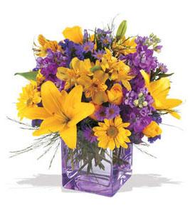 Düzce çiçek , çiçekçi , çiçekçilik  cam içerisinde kir çiçekleri demeti