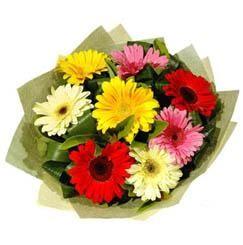 9 adet karisik gerbera demeti  Düzce çiçek , çiçekçi , çiçekçilik