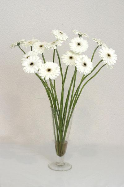 Düzce çiçek , çiçekçi , çiçekçilik  cam vazo içerisinde 17 adet sade gerbera