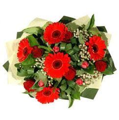 Düzce 14 şubat sevgililer günü çiçek   5 adet kirmizi gül 5 adet gerbera demeti
