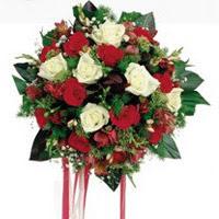 Düzce 14 şubat sevgililer günü çiçek  6 adet kirmizi 6 adet beyaz ve kir çiçekleri buket