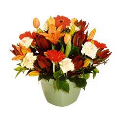 mevsim çiçeklerinden karma aranjman  Düzce internetten çiçek satışı