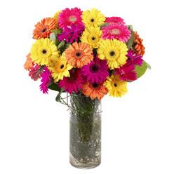 KARISIK GERBERALARDAN CAM VAZO TANZIMI  Düzce hediye çiçek yolla