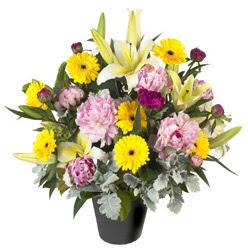 karisik mevsim çiçeklerinden vazo tanzimi  Düzce İnternetten çiçek siparişi