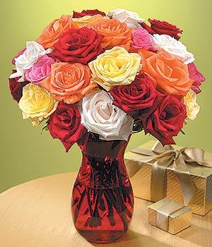 Düzce çiçek yolla  13 adet renkli gül