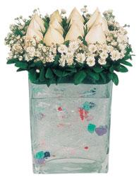 Düzce hediye sevgilime hediye çiçek  7 adet beyaz gül cam yada mika vazo tanzim
