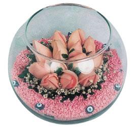 Düzce çiçek servisi , çiçekçi adresleri  cam fanus içerisinde 10 adet gül