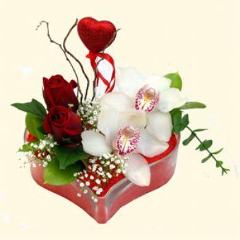 Düzce çiçek gönderme  1 kandil orkide 5 adet kirmizi gül mika kalp