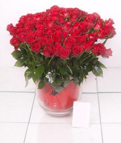 Düzce online çiçekçi , çiçek siparişi  101 adet kirmizi gül