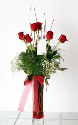 Düzce çiçek yolla , çiçek gönder , çiçekçi   6 adet kirmizi gül ve cam yada mika vazo