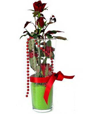 Düzce yurtiçi ve yurtdışı çiçek siparişi  Cam yada mika içerisinde 9 adet kirmizi gül - sevdiklerinize özel