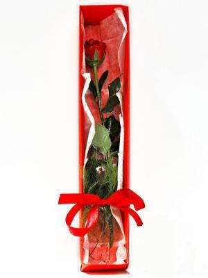 Düzce çiçekçi mağazası  1 adet kutuda gül