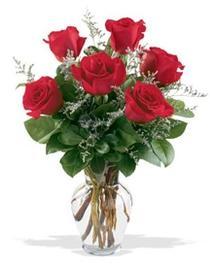 Düzce internetten çiçek siparişi  7 adet kirmizi gül cam yada mika vazoda sevenlere