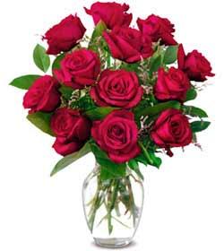 Düzce yurtiçi ve yurtdışı çiçek siparişi  1 düzine kirmizi gül sevenlere özel vazo gülleri