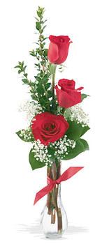 Düzce çiçek yolla , çiçek gönder , çiçekçi   mika yada cam vazoda 3 adet kirmizi gül