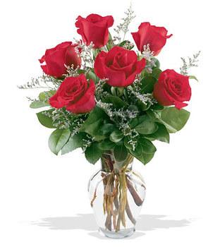 Düzce çiçek yolla , çiçek gönder , çiçekçi   cam yada mika vazoda 6 adet kirmizi gül