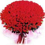 Düzce çiçek siparişi sitesi  1001 adet kirmizi gülden çiçek tanzimi